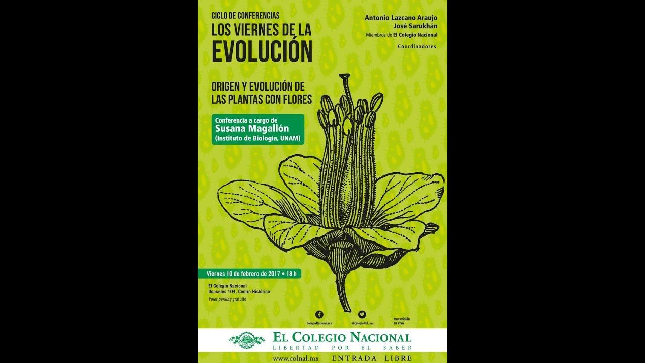 Origen y evolución de las plantas con flores