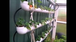 4-tier Strawberry Planter Using Storm Waterpipe Part 2