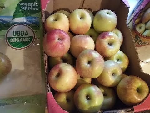 Salvage Grocery Score: Organic Fuji Apples 2 x 4lb bags