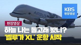 [현장영상] 하늘을 나는 돌고래 봤니?…'벨루가 XL' 운항시작 / KBS뉴스(News)