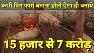 Modern Pig farming in Rajasthan ! How to make pig farm in india in hindi आधुनिक सुकर पालन