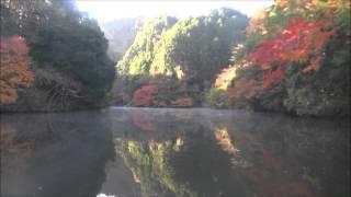 2015年12月9日撮影 (つばきもと~猪の川上り) 【ウーマン・イン・チェ...