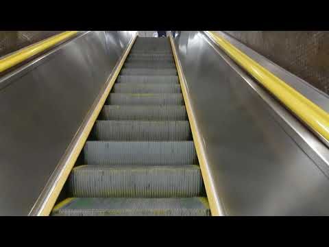 Escalator in Hong Kong is maybe fastest in the world.