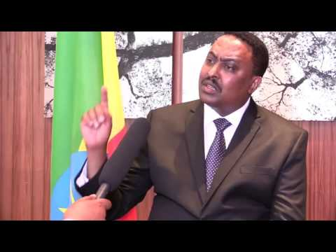 Ethiopian: Interview With Dr Workneh Gebeyehu Foreign Affairs Minister