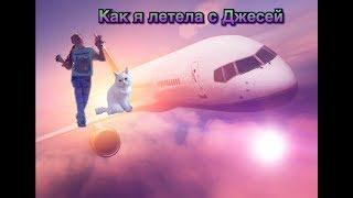 Как я летела с кошкой в самолёте !!!!