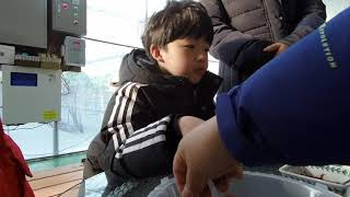19.02.16 경남 창원 동읍 토리 딸기팜 체험~ 샤…