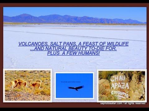 ARGENTINA: THE MAGNIFICENT ALTIPLANO! / ADVENTURE TRAVEL