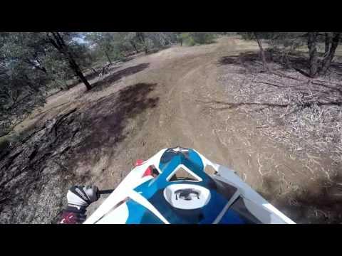 Pitbike crf110. Scrub track hand built