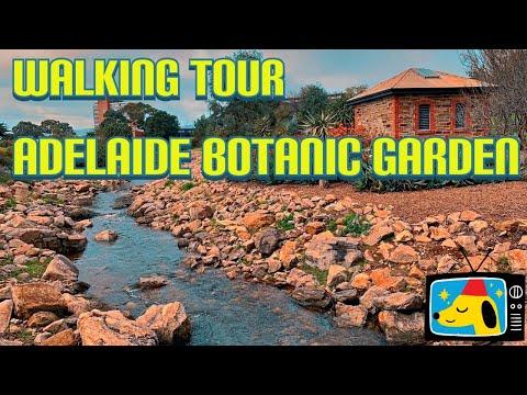 Walking Tour @ Adelaide Botanic Gardens, South Australia || Stanlig Films ||