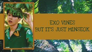 Baixar EXO vines but it's just Minseok