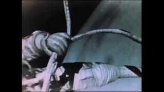 Aleksei Leonov's First Spacewalk