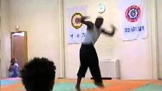 Акробатика в боевых искусствах