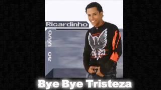 "Cantor RIC@RDINHO_ "" Bye Bye Tristeza """