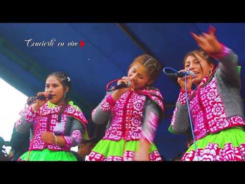 FLORYCIELOS DE LA HUAYLIA|►|Mix Huaylia En Vivo 2018►QoriSonqoPro