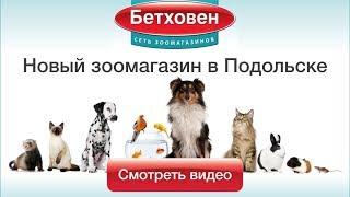 Магазин Бетховен | www.sklad-man.ru | Магазин Бетховен в Подольске