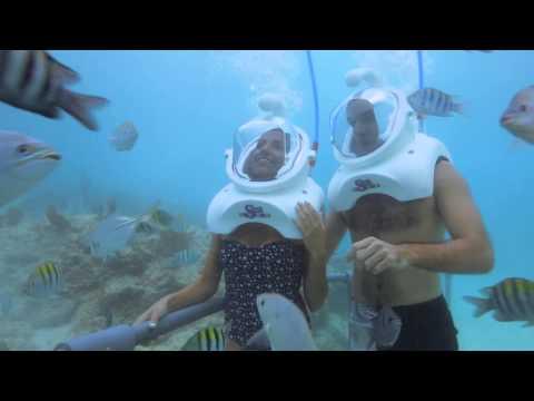 Sea Trek®: Caminata Submarina | Xcaret México! Cancún Eco Park