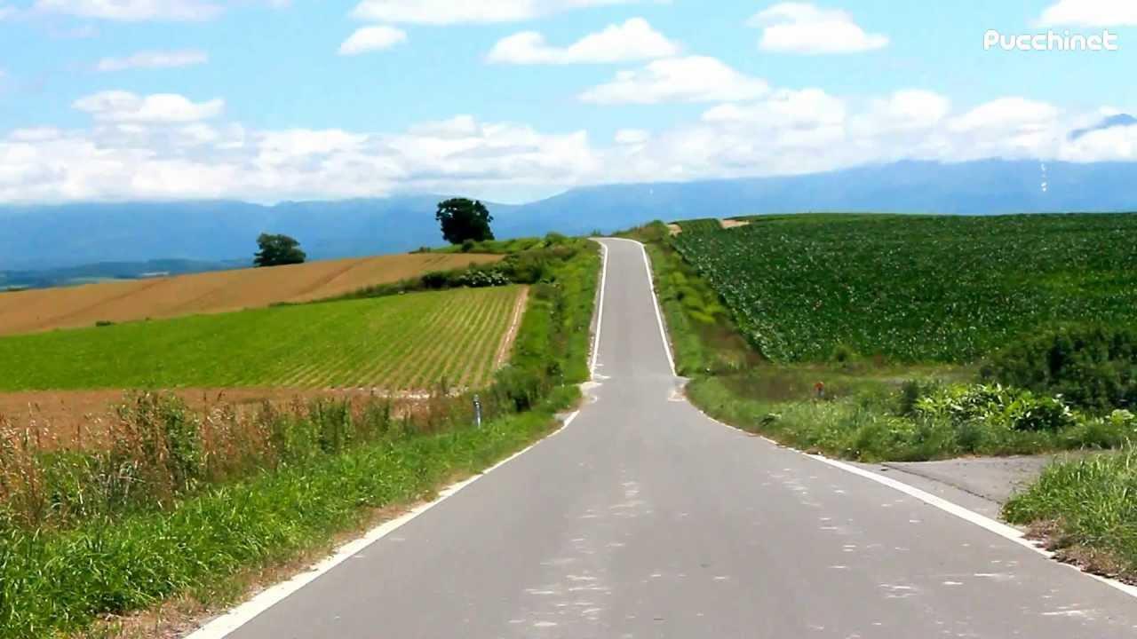 路_美瑛の丘「パッチワークの路」、絶景の中を走ってみた@北海道
