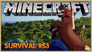 Minecraft Survival #53: Onde eu fui parar?