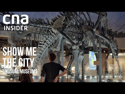 Unusual Museums Of Singapore | Show Me The City | Full Episode