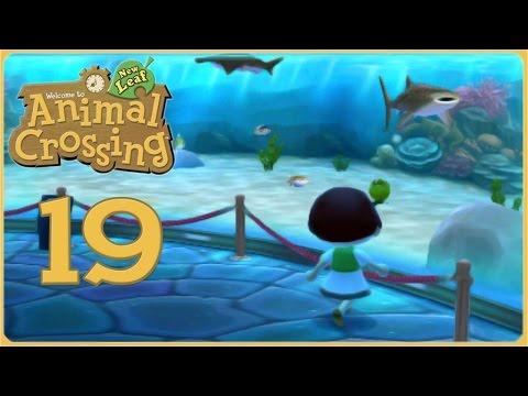 Whale Shark Wonders & Beetle-Bought Dreams!! • Animal Crossing: New Leaf - Episode #19