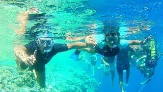 UNA BARRIERA CORALLINA STUPENDA! Vlog Sharm el-Sheikh🇪🇬