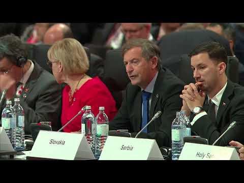 #OSCEMC17 First Plenary Session: SLOVENIA