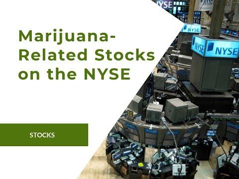 TV | The Daily Marijuana Observer - Daily Marijuana News