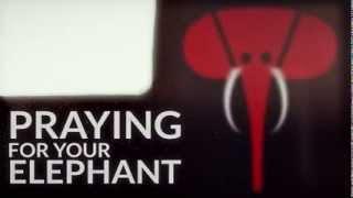 Praying For Your Elephant(Adam Stadtmiller)