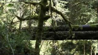 Oregon City Water Works  Memaloose & S.  Clackamas Explore
