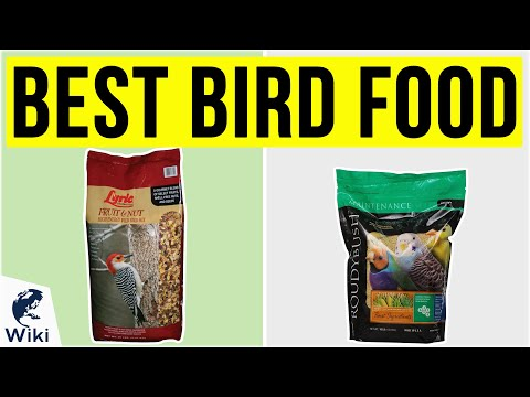 10 Best Bird Food 2020