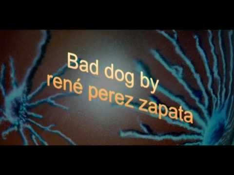 bad dog by rené perez zapata impro piano solo