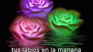 Erev Shel Shoshanim (Noche de Rosas) ערב של שושנים ****** subtitulado Español