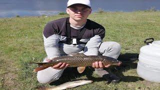 Рыбалка на карпа сазана ШАШЛЫК Рыбалка с ночевкой