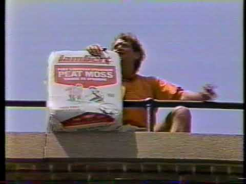 David Letterman Dropping Stuff off of a 5 Story Tower.