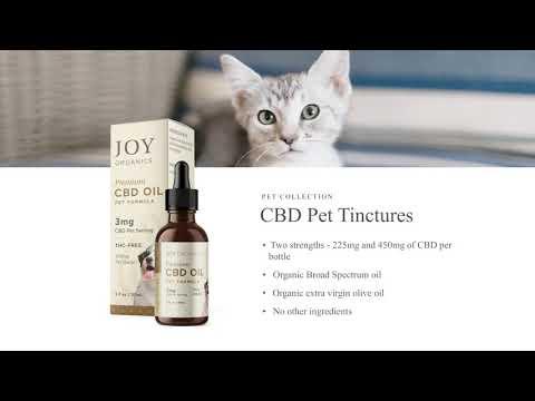 Educational Series (21 Of 31): Joy Organics CBD Pet Collection