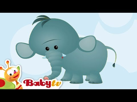 Elephant - Learning Animal Sounds and Names for Kids & Toddlers | BabyTV