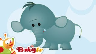 Learning Wild Animals Names and Sounds for kids in English Funny Lion Elephant Africa Zoo animals
