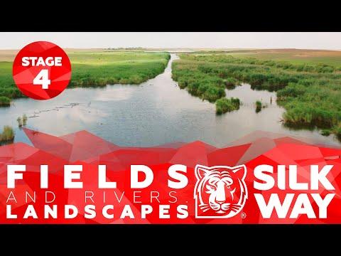 Landscapes / Stage 4