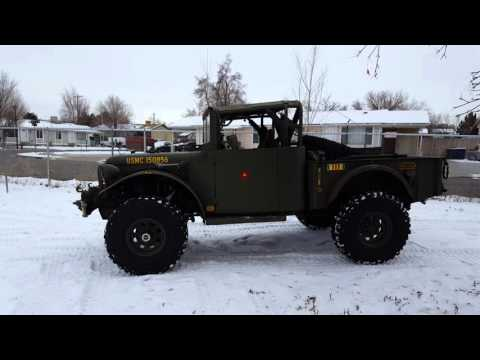 M37 playing in the snow, by itself  Granny low     - YouTube