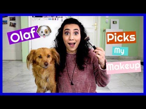 Ο σκύλος μου διαλέγει το μακιγιάζ!    Dodo