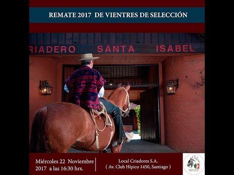 Remate Vientres de Selección Criadero Santa Isabel