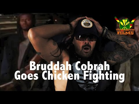 Worst Chicken Fight Ever! | (Walking Dead Parody)