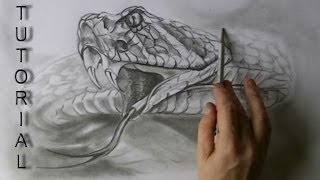 How to draw a Snake - Rattlesnake