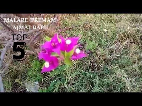 MALARE SONG PREMAM MOVIE | COVER BY AJMAL BABU (ORIGINALLY SUNG BY VIJAY YESUDAS)