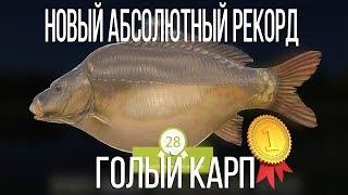 РУССКАЯ РЫБАЛКА 4 | АБСОЛЮТНЫЙ РЕКОРД ГОЛОГО КАРПА