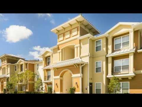 Lakewood Pointe Apartments Brandon Fl