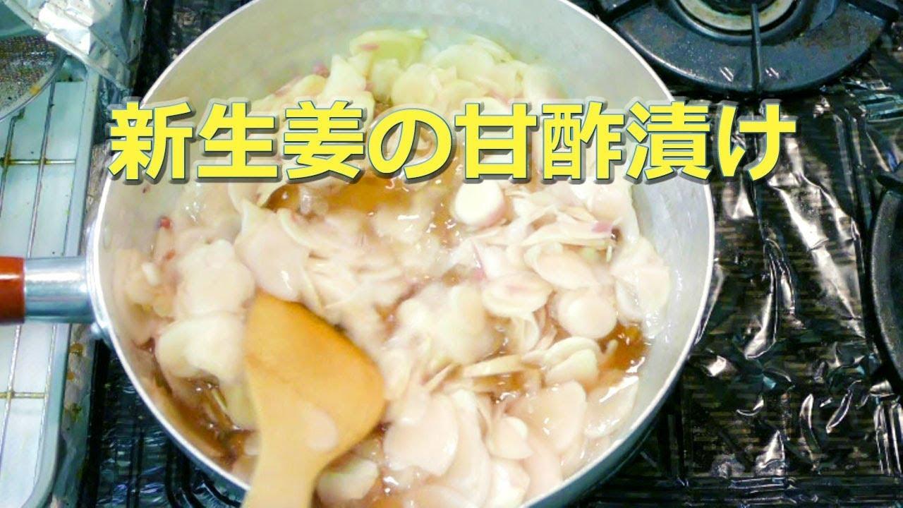 生姜 ガリ 新