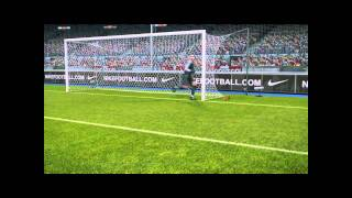 PES 2011 net glitch - PC - [HD]