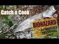 Infected Florida River Fish can Kill me? {Catch and Cook}
