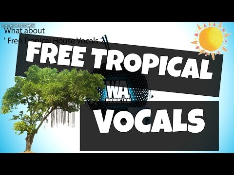 FREE Tropical House Vocals 2 2 Kygo Style Kits, Stems, Loops / Samples Dry / Wet Acapella